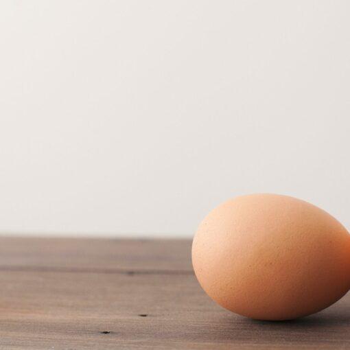 How to improve egg quality